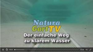 "NGTV"""