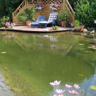 Gartenteich, Schwimmteich, Fischteich, Naturteich zum Selber-Bauen ...