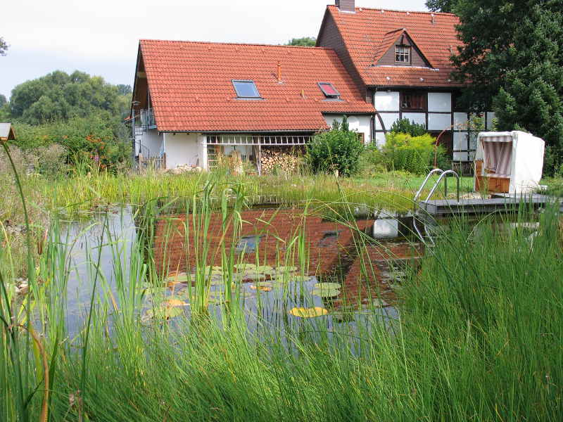 Vorteil schwimmteich gartenteich planung bau und pflege for Gartenteich pflege