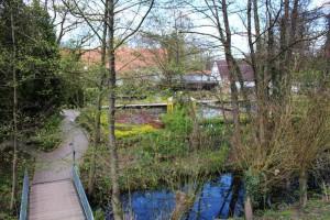 Live blick in den park gartenteich planung bau und pflege - Bilder von gartenteichen ...