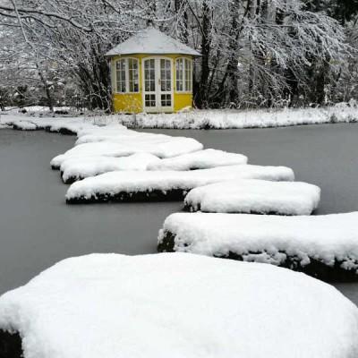 Die gartenteiche des parks k nnen im winter kostenlos for Fischteich im winter