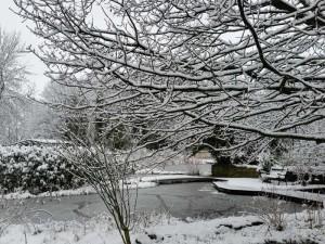 Die Teichlandschaft eignet sich hervorragend, im Winter erwandert zu werden