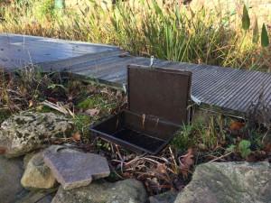 Die Ziel-Saug-Technik hilft, das Wasser im Teich energiesparend zu bewegen.